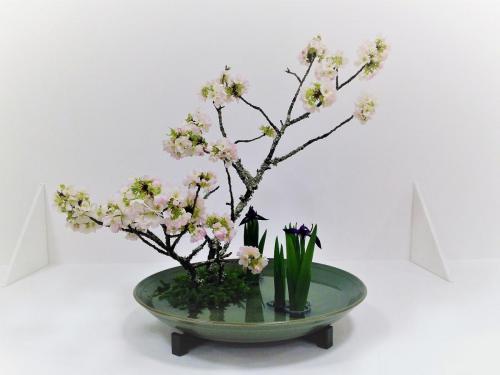 桜・ 燕子花